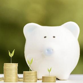 Bild Praxishandbuch zur Finanzkompetenz im Älterwerden vorgestellt